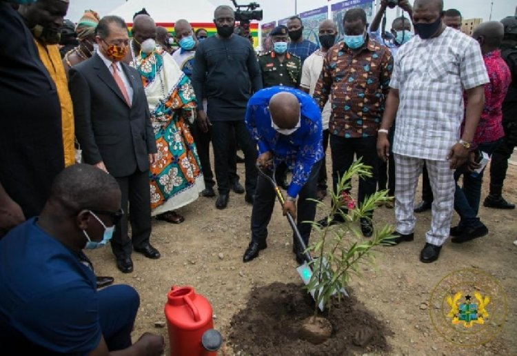 Nana Addo, Others To Join In Planting 5 Million Trees Today Under 'Green Ghana Project'